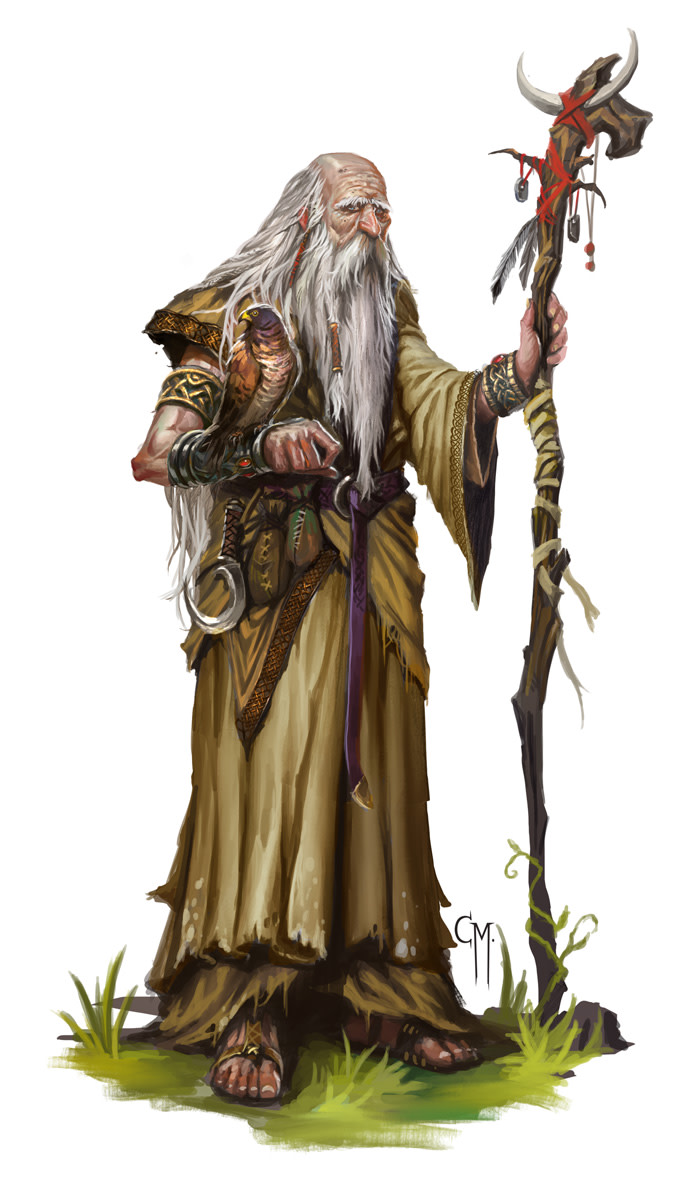 A Druid Priest