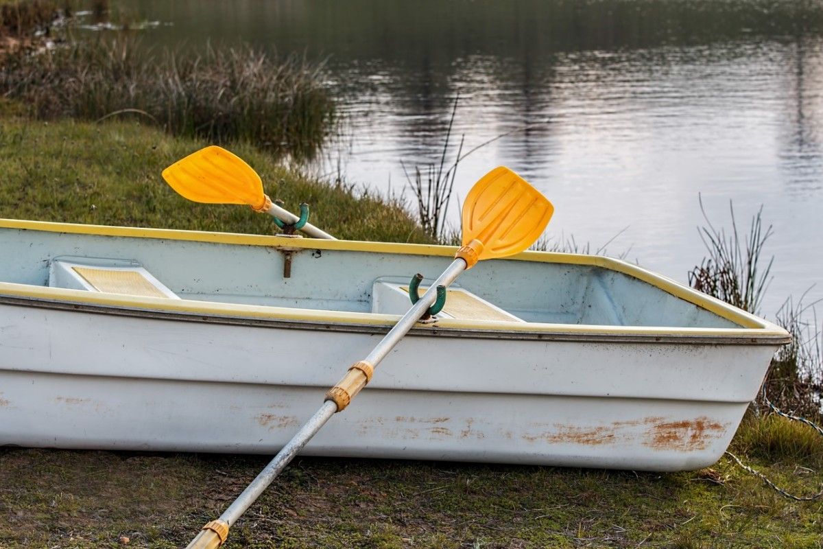 Row boat oars Image by Steve Buissinne from Pixabay