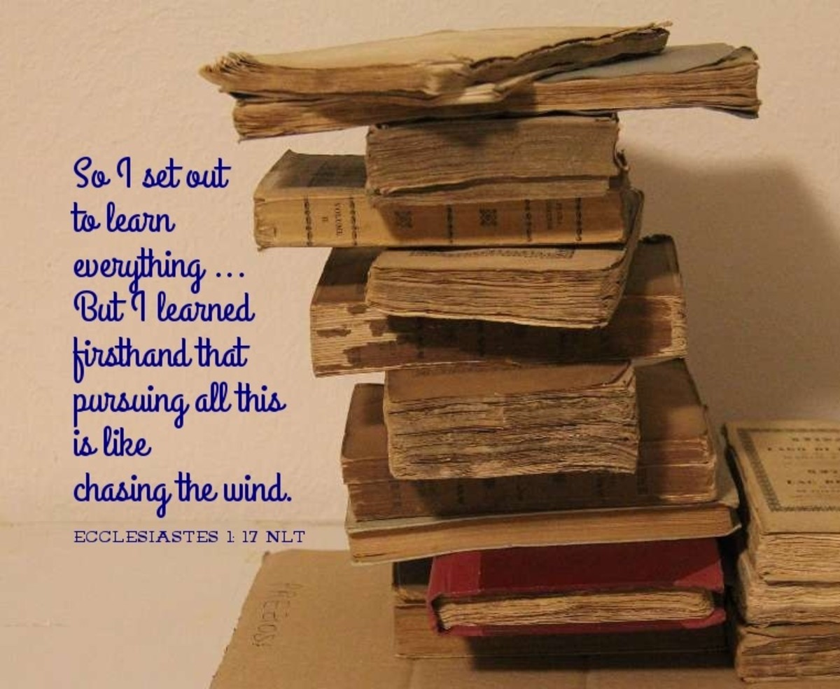 """So I set out to learn everything . . . all this is like chasing the wind."""" (Eccl. 1:17)"""