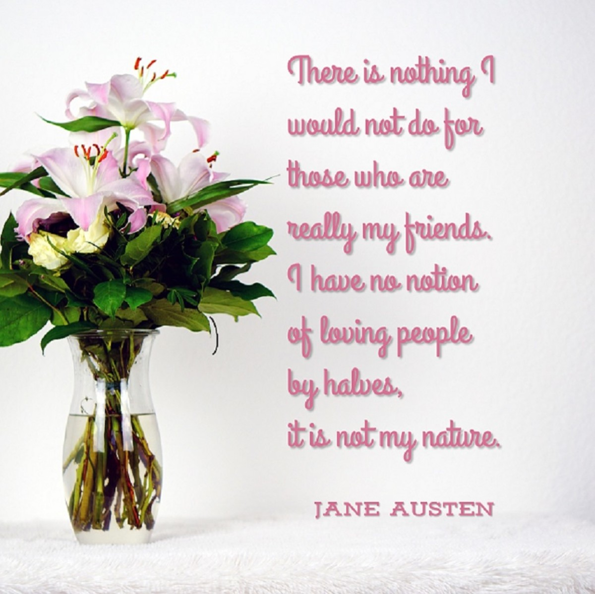 There is nothing I would not do for those who are really my friends. Jane Austen