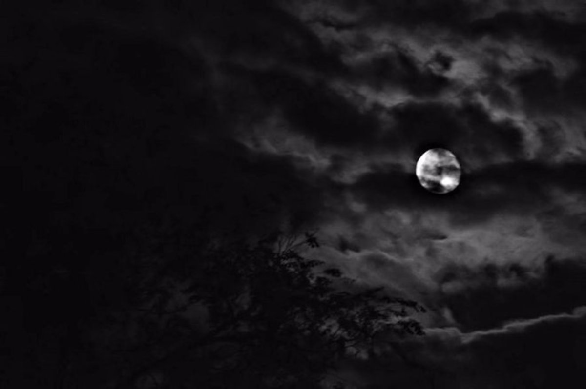 Beware of the full moon, for in it's realm all manner of supernatural occurrences await ...