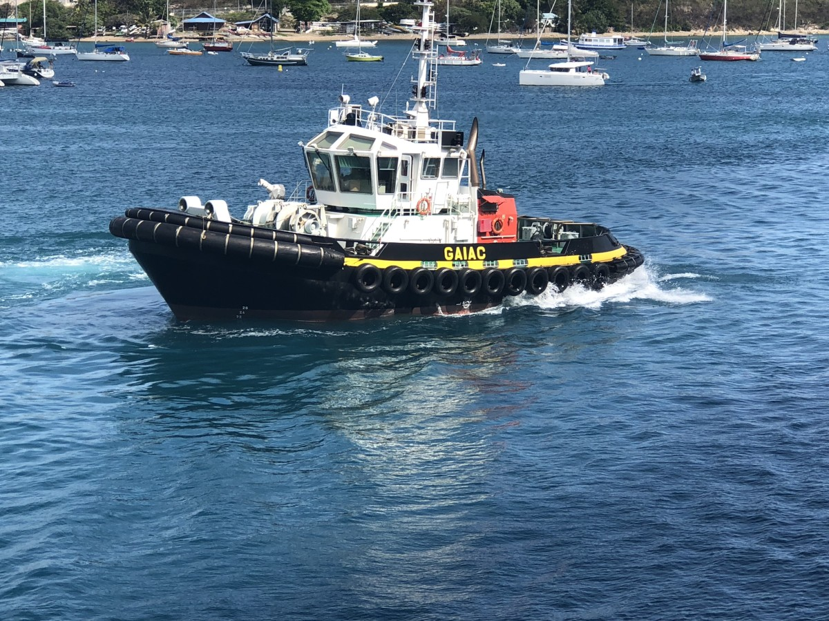 The tug boat that towed us into harbour