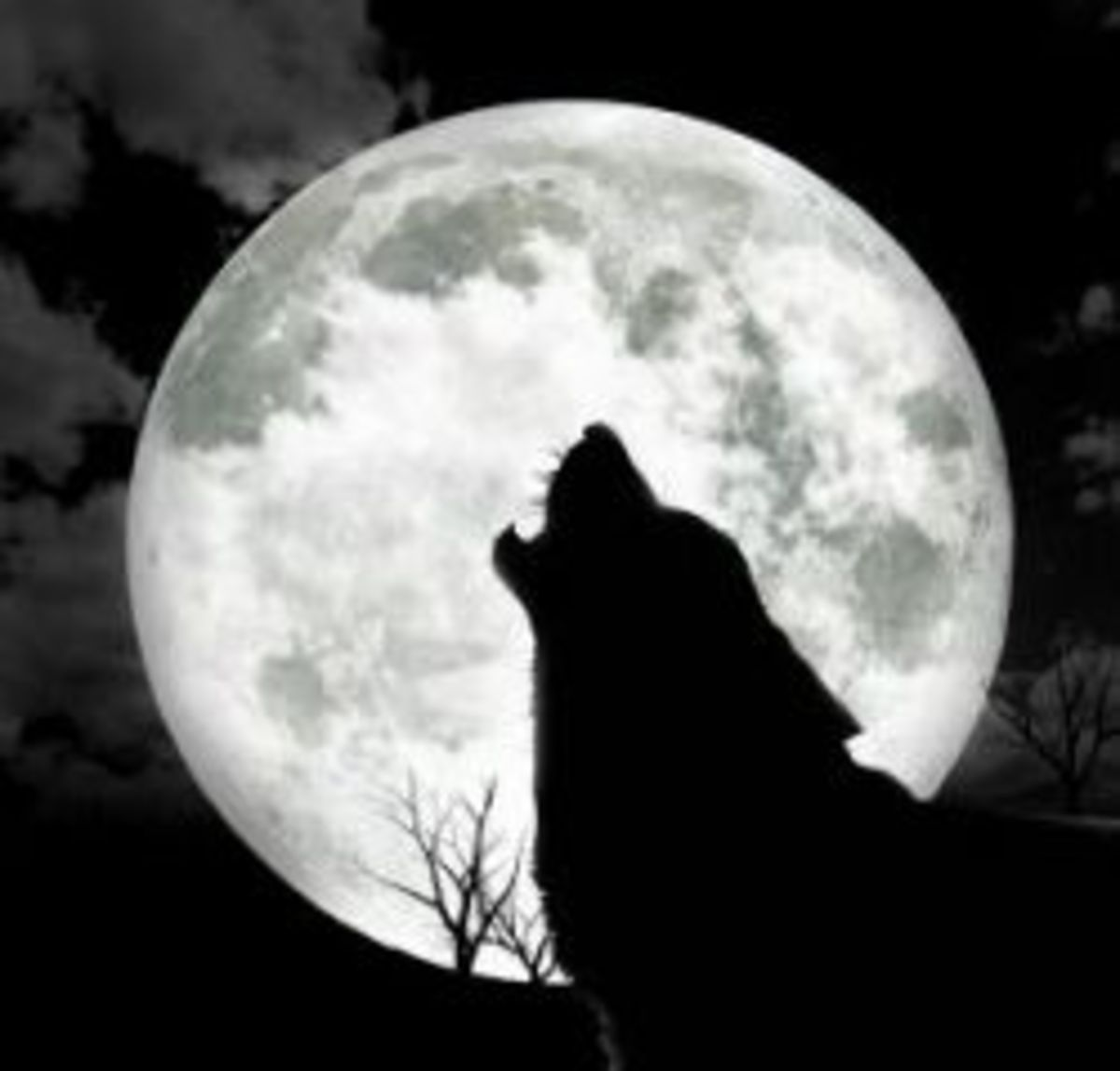 A howling wolf silhouetted against a full moon
