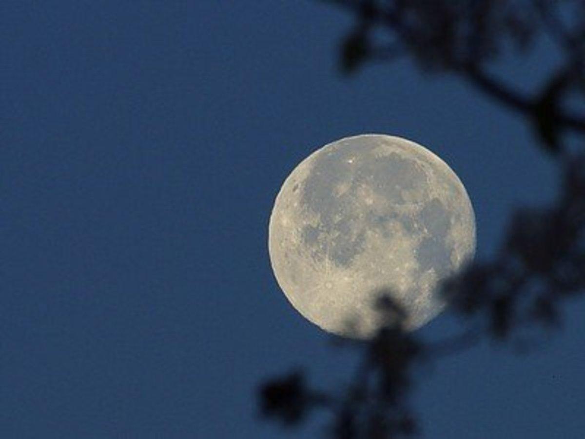 Winter Moon at Night