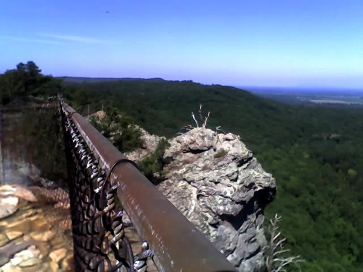 Was I crazy to go up there to get this photo on Mt. Petit Jean... or did that safety fence mean I was just enjoying a great view? I know if I paint it as a landscape, I'll leave out the fence for drama.