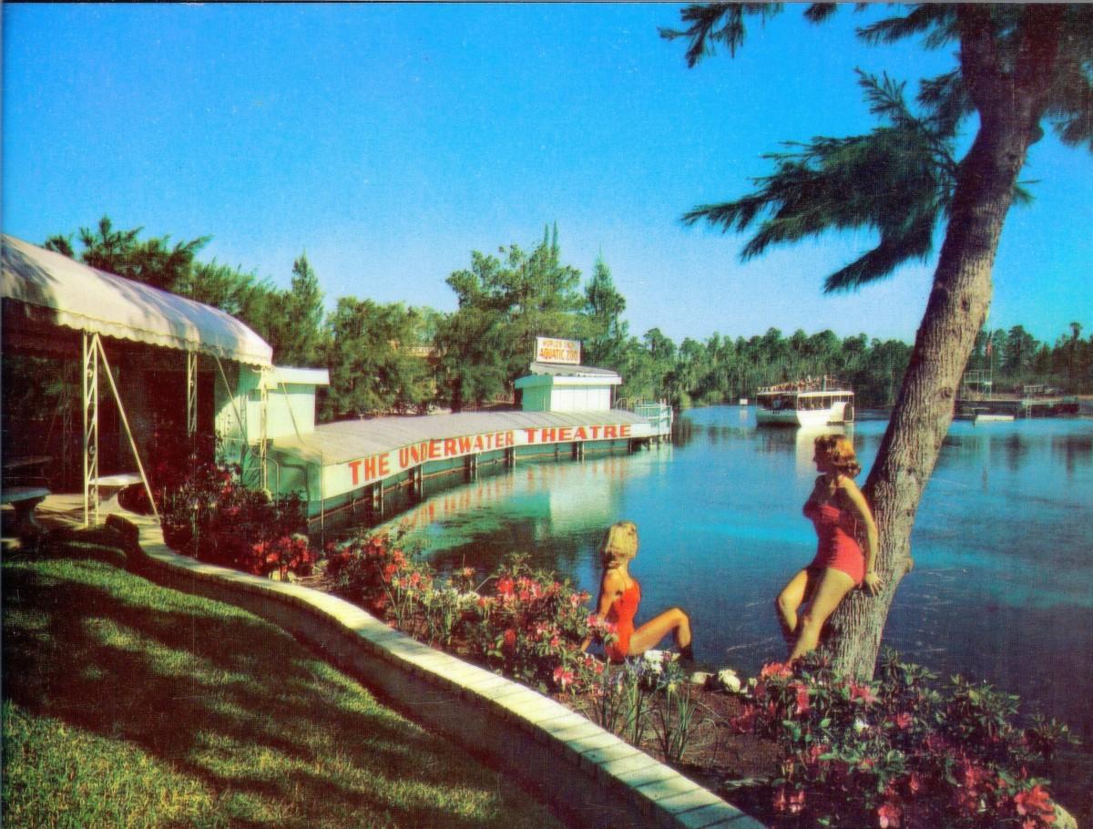 Vintage Postcard of Underwater Theater at Weeki Wachee Spring, Florida