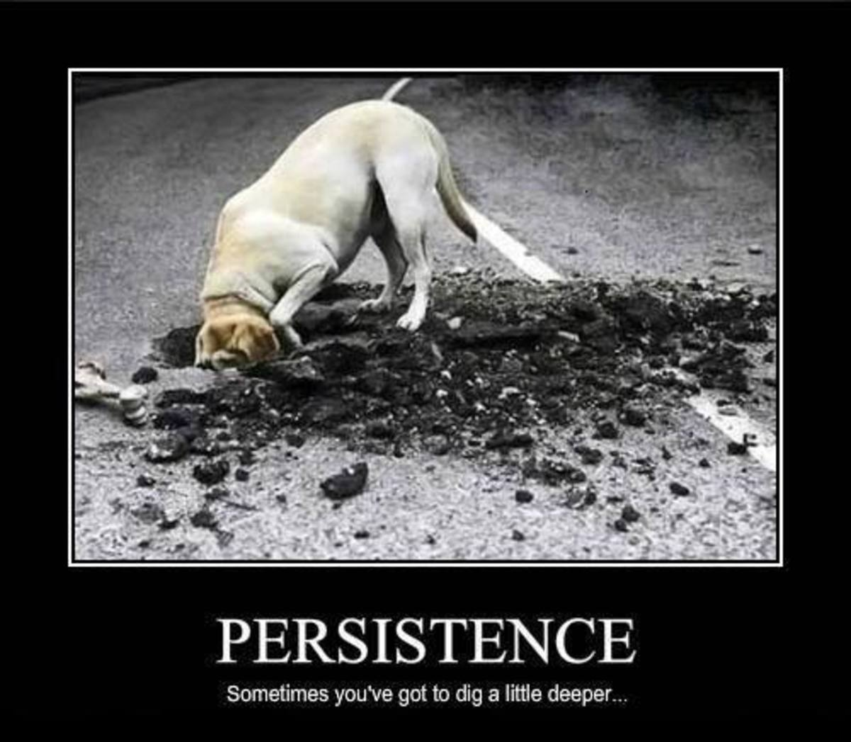 5-insane-but-true-things-about-persistence