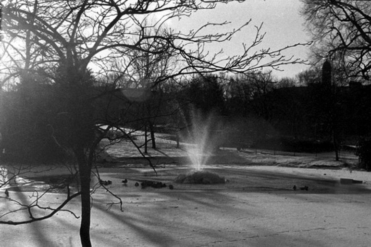frozen pond, kelvingrove