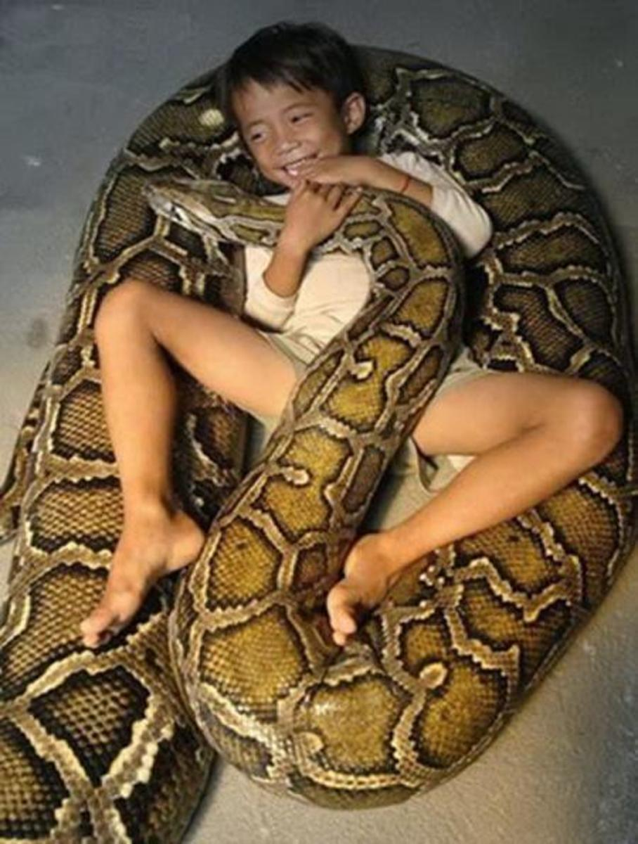 "Do things that scare you not kill you--I'm afraid this kid ""made his home in that Boa's abdomen"""