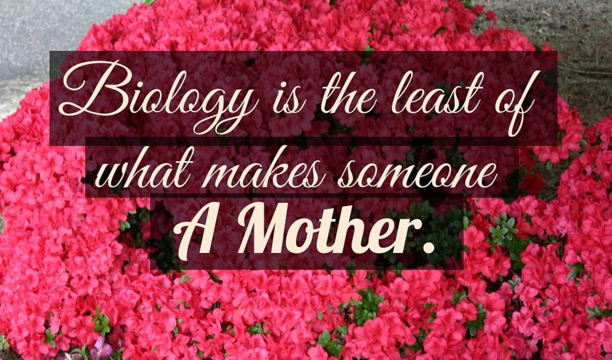 Mother's Day Azalea