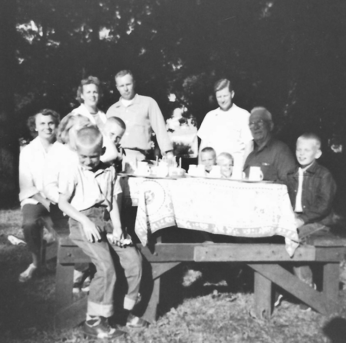 One of the many picnics we had as a family.  This one appears to also be a birthday celebration.