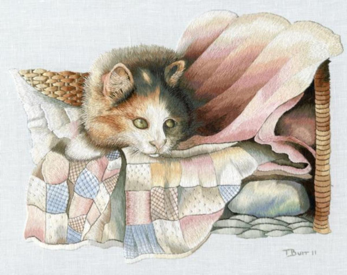 Cat on a quilt by Trish Burr.  Used with permission.