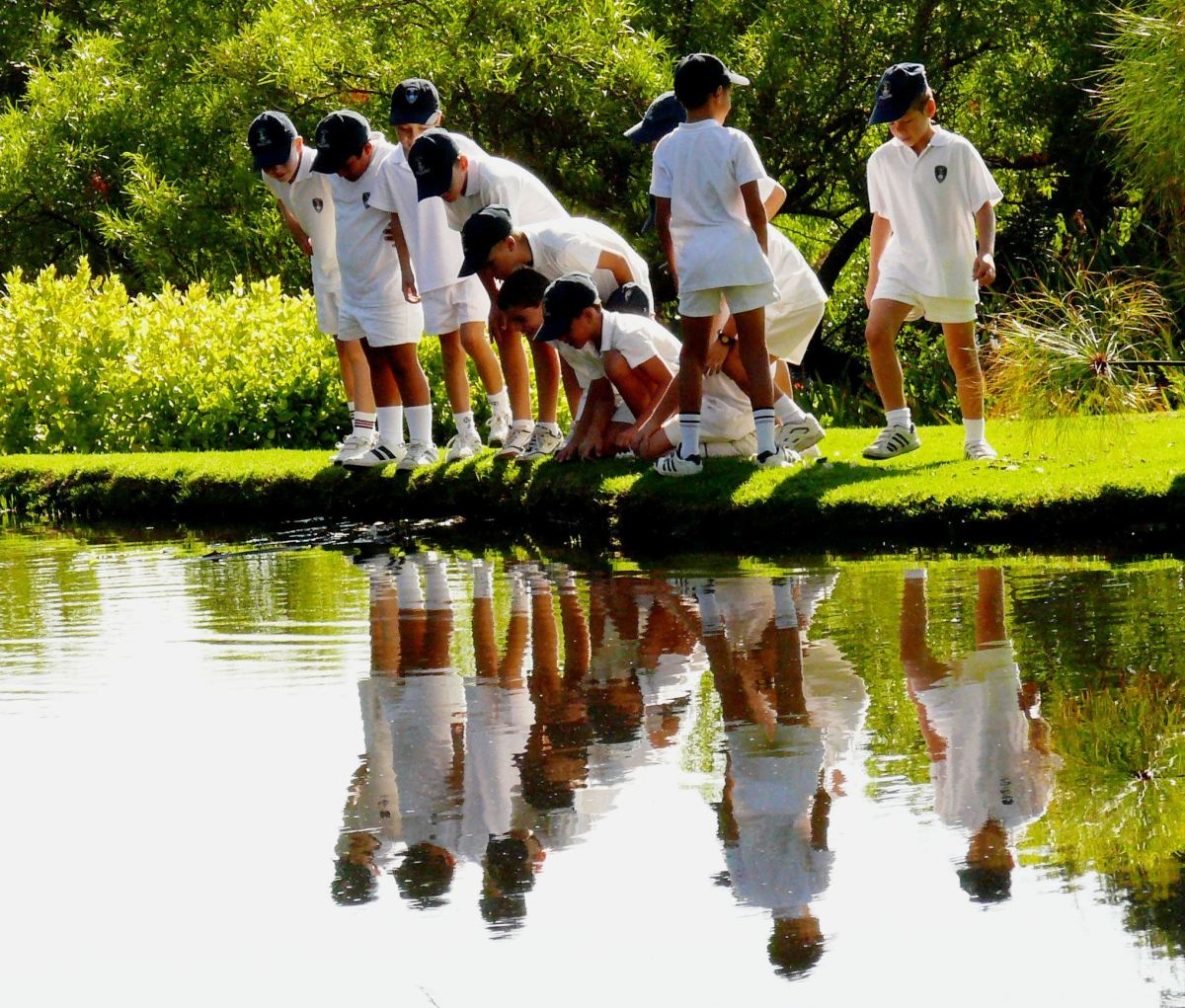 A School group at Kirstenboch Botanical Gardens in Cape Town