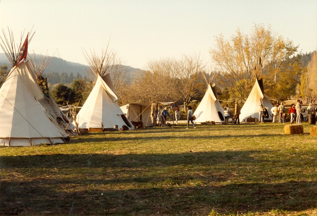 The Mountain Man Festival