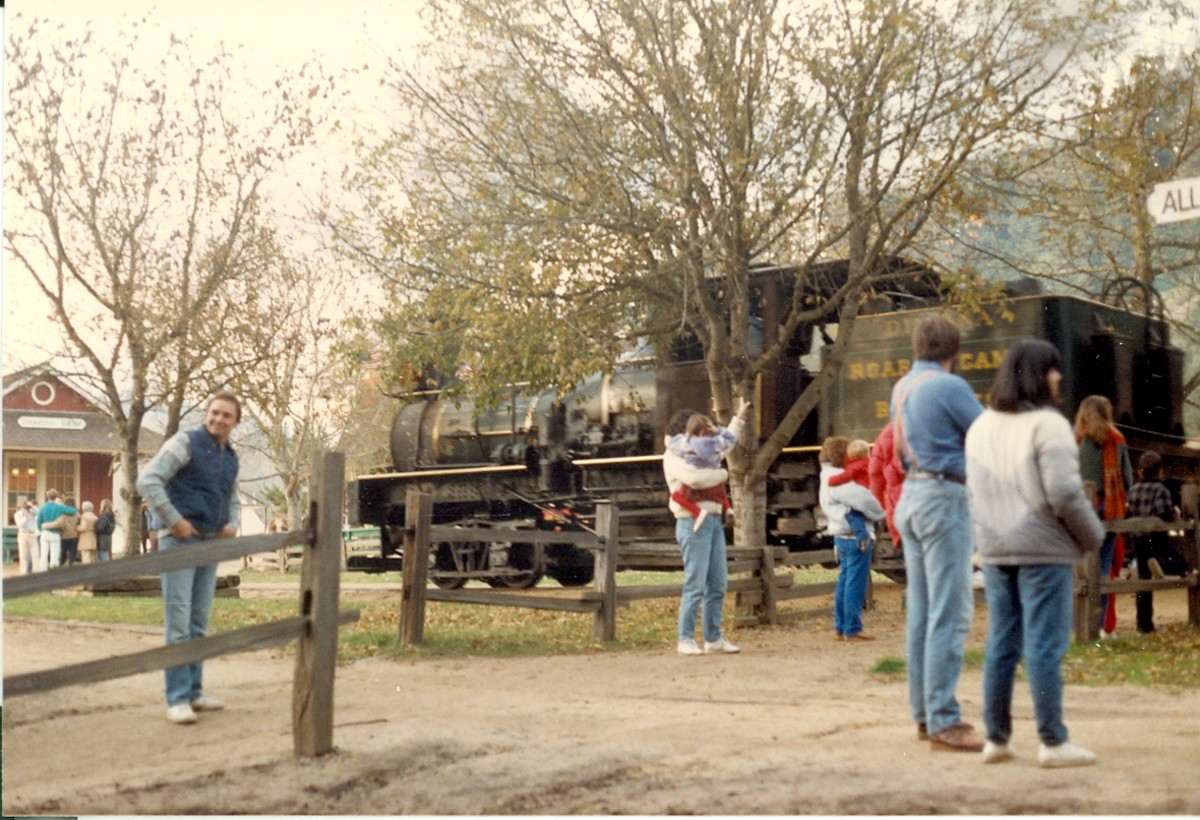Felton Narrow Gauge Train