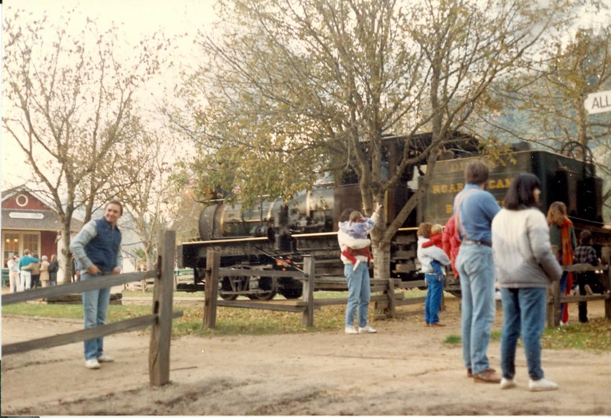 Felton Narrow Gauge Train