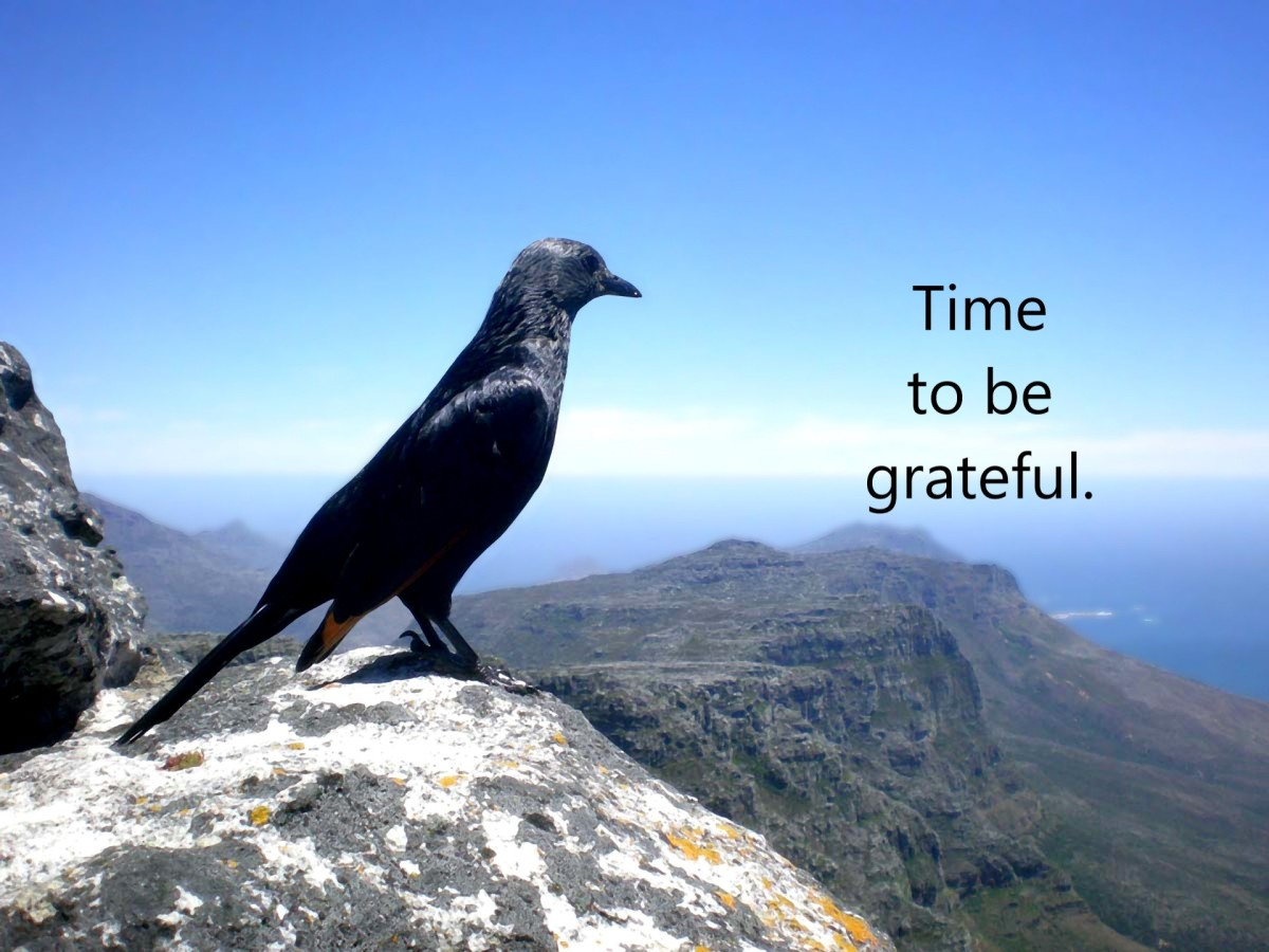 Time to be grateful.