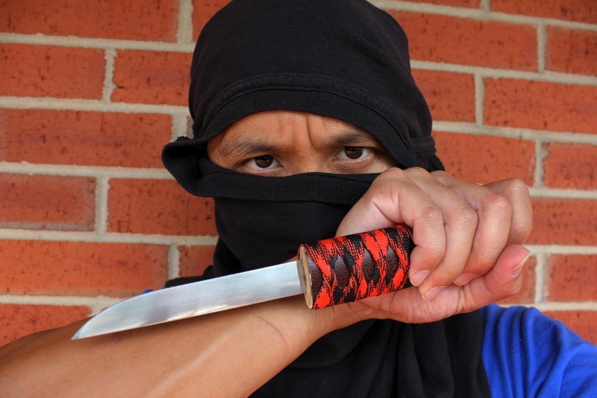 code of the ninja