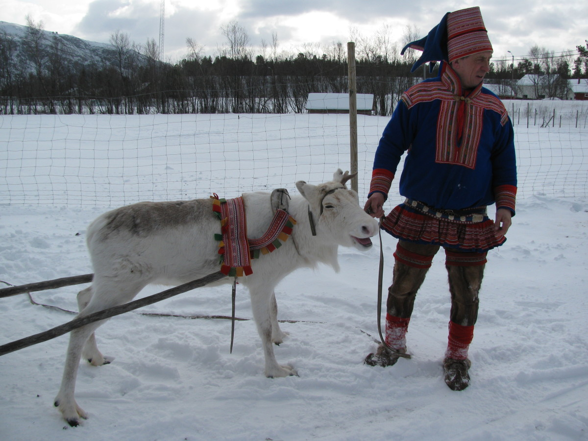 'Do I have to do this again?  These tourists drive me mad!' (said the reindeer)