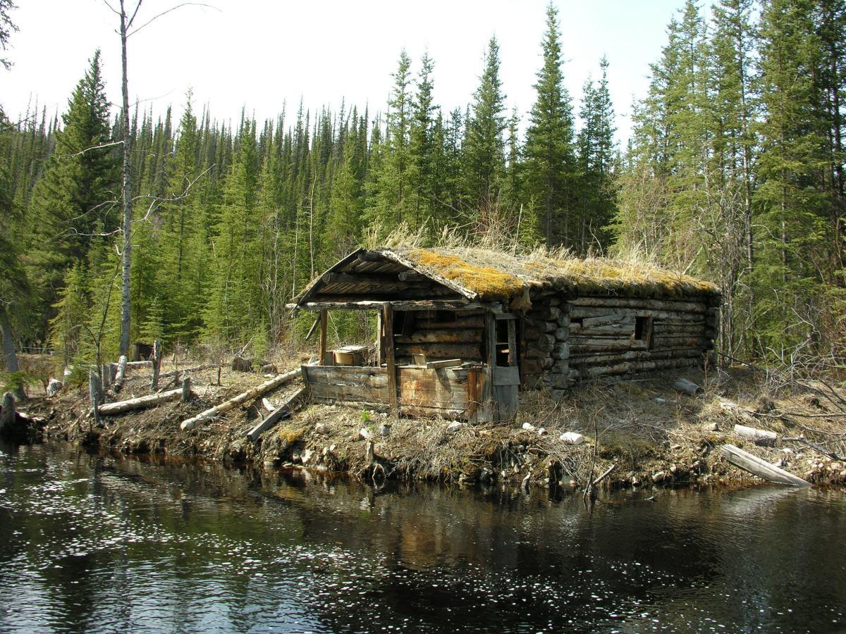 Aleksei's log cabin