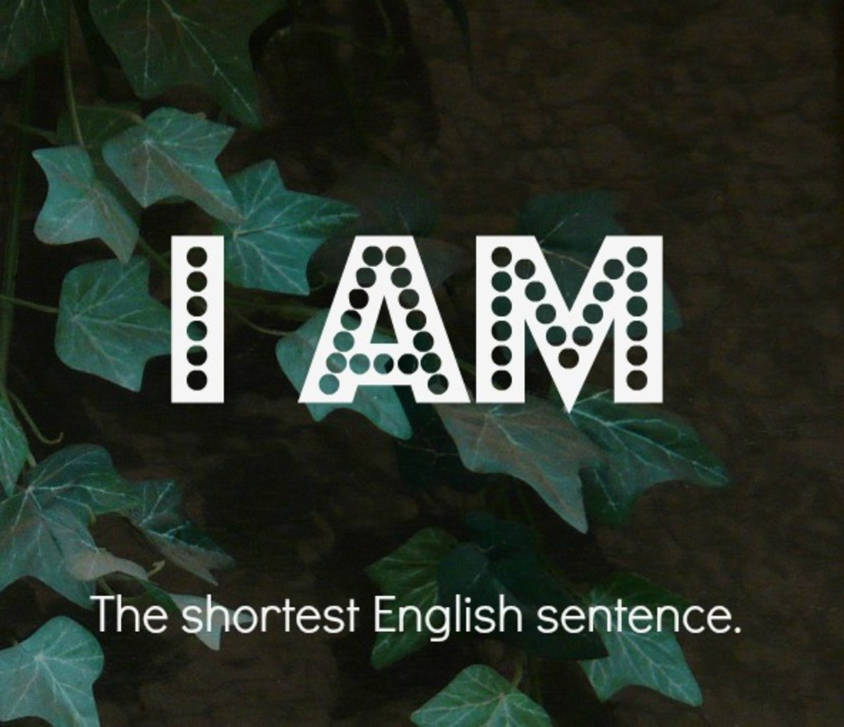 """I am"" is the shortest English sentence."
