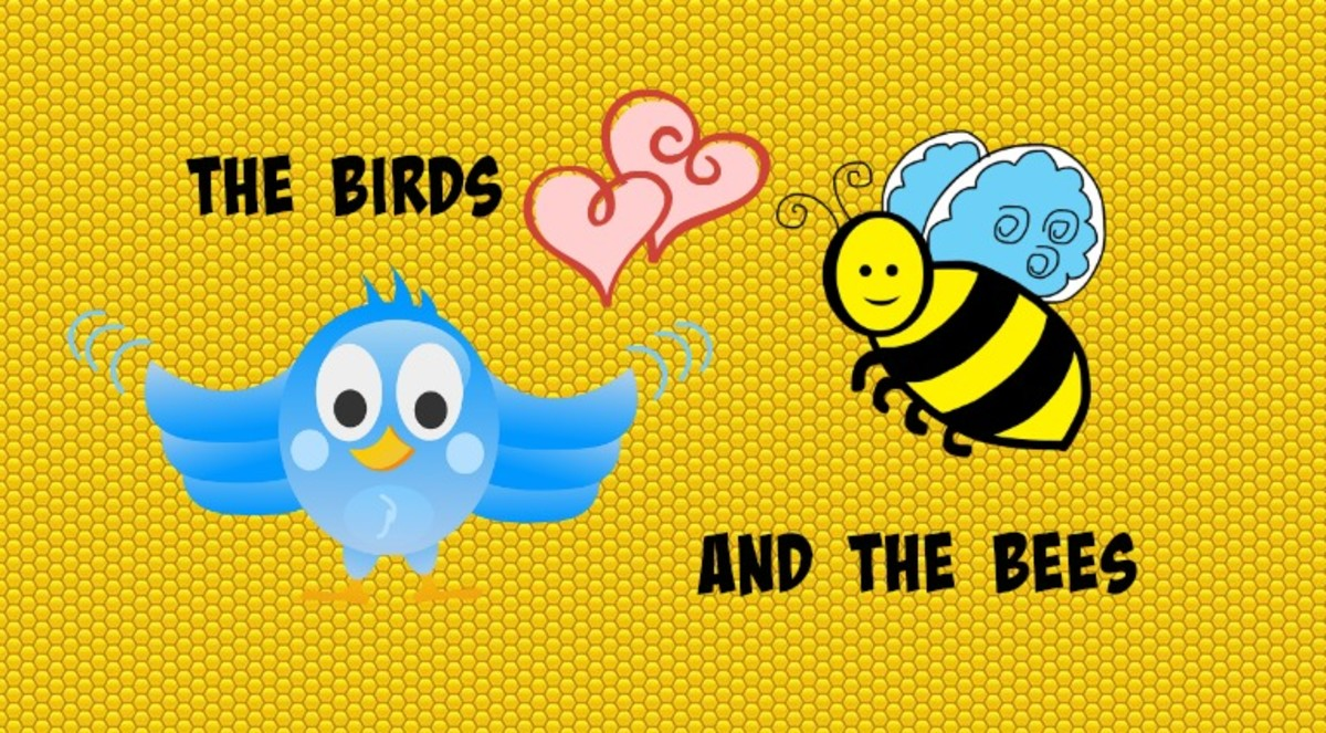 What's up with the birds and the bees?