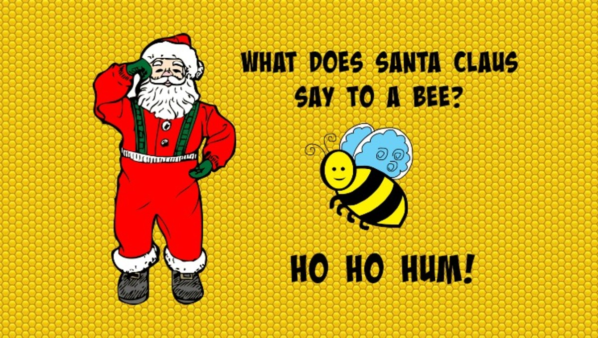 What does Santa Claus say to a bee? Ho Ho Hum!