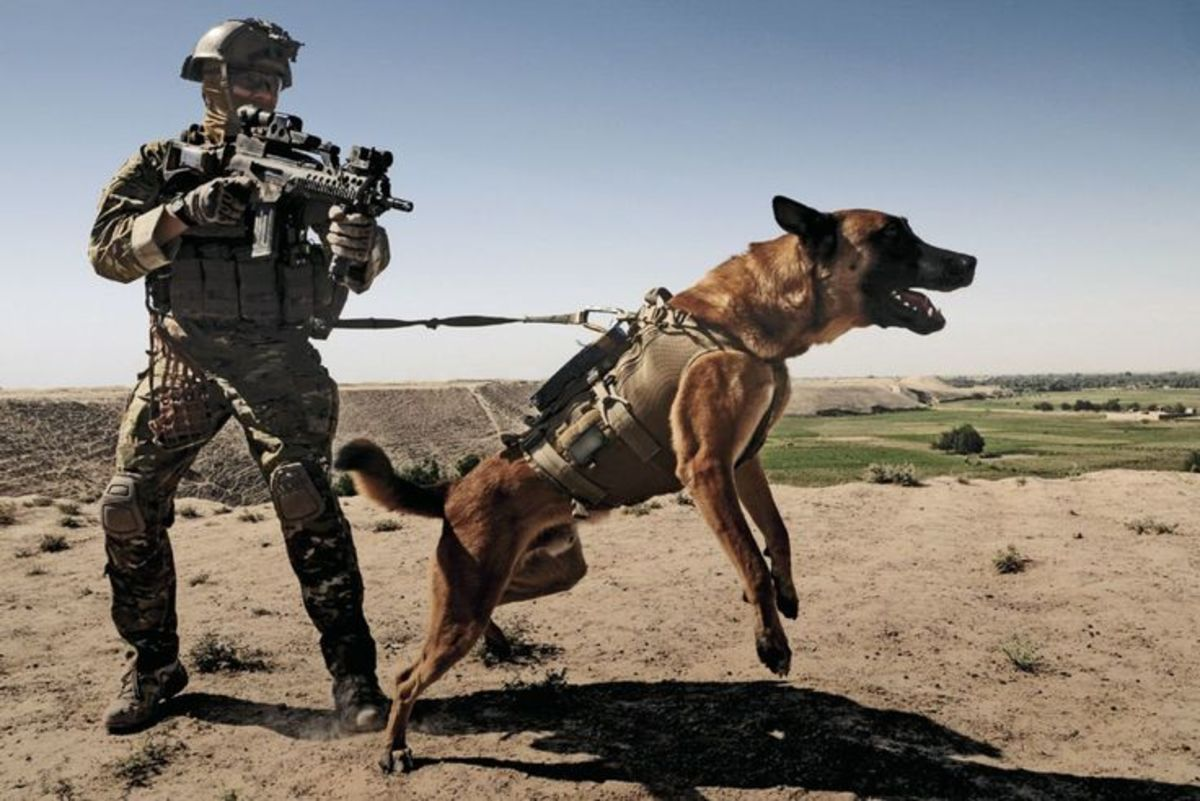He was actually trained by the US Navy SEALS Let's face it, which one would you argue with?