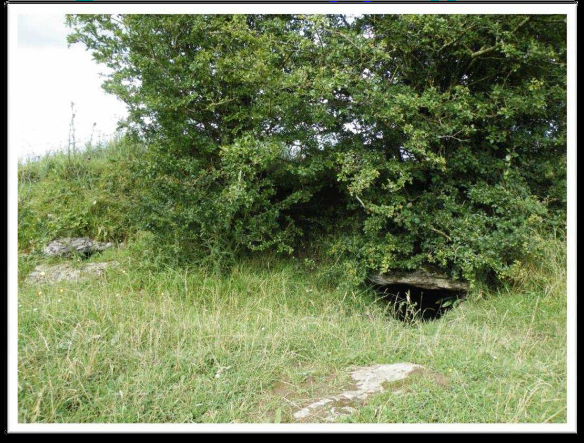 Owenegcat (Cave of Cats) -- entry cave into the Cruachan Mound.