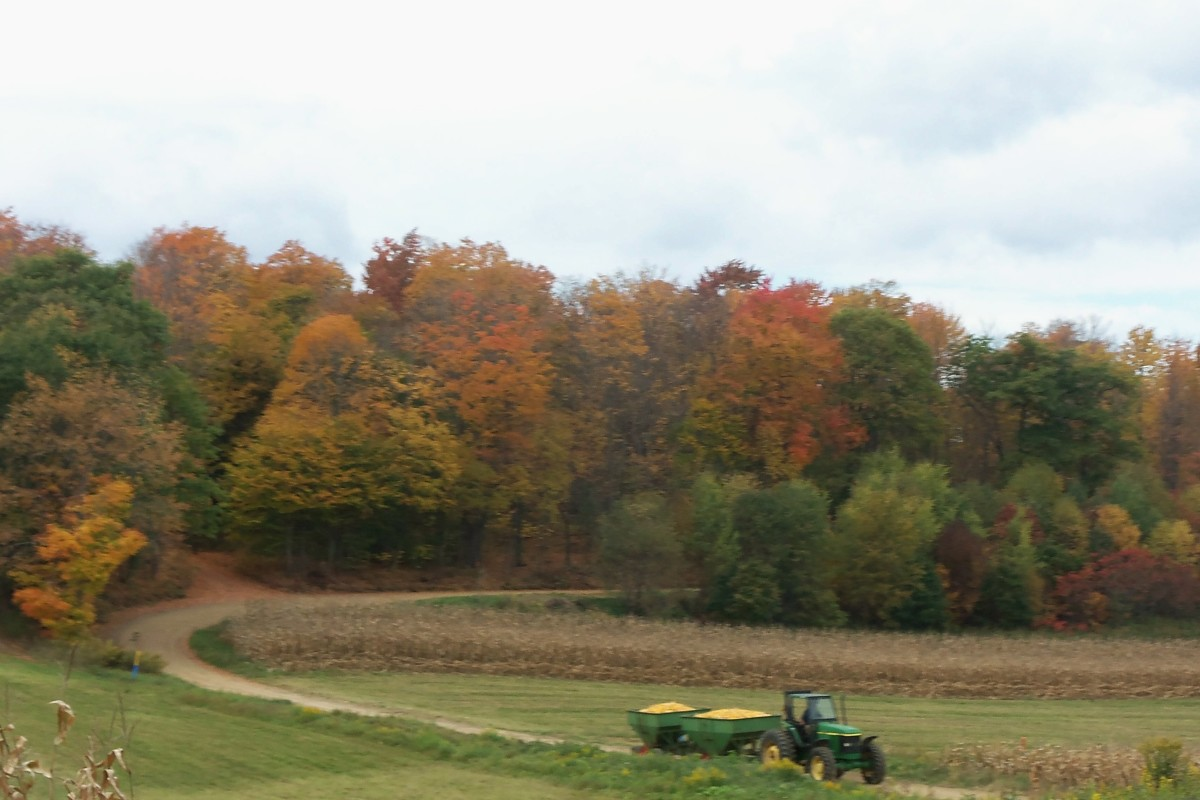 Farm land and harvest time...
