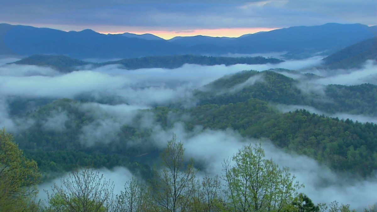 Fog on the West Virginia Appalachians