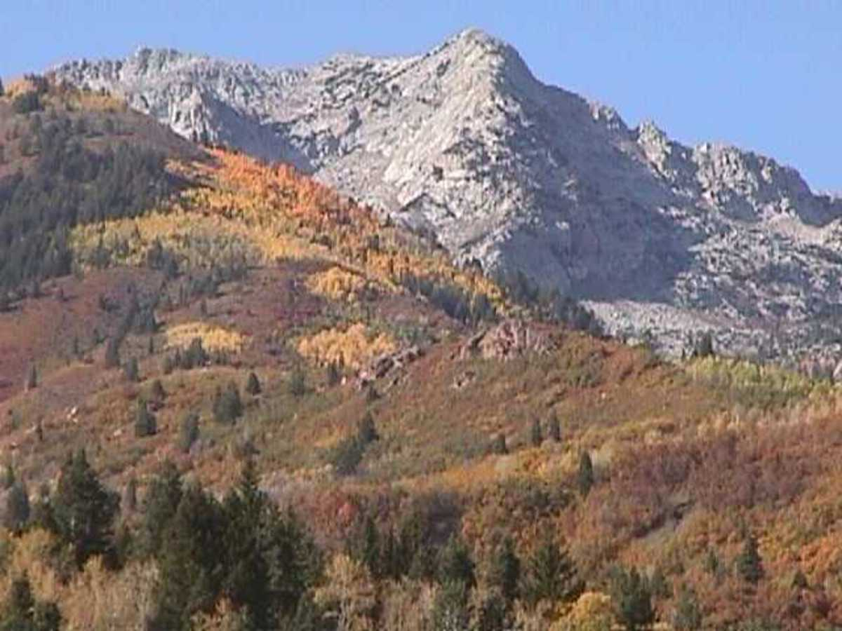 Utah is located in the Rocky Mountains.