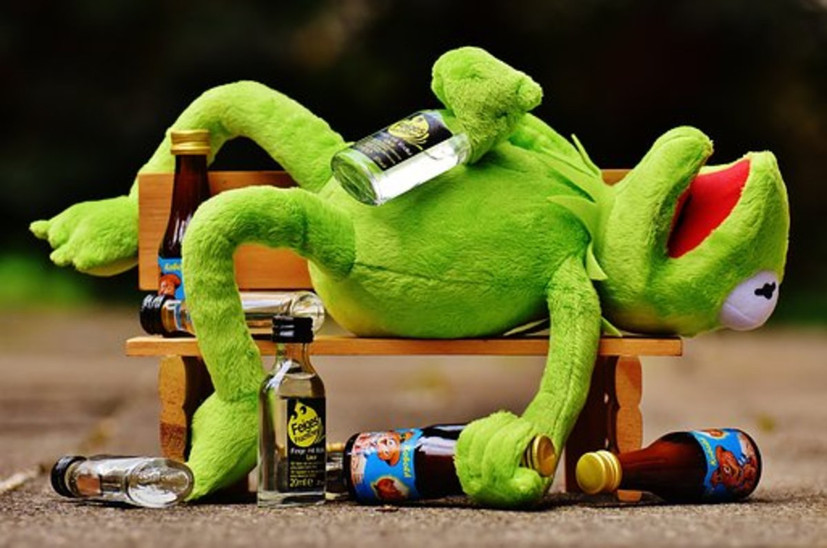 Kermit gassed on beer
