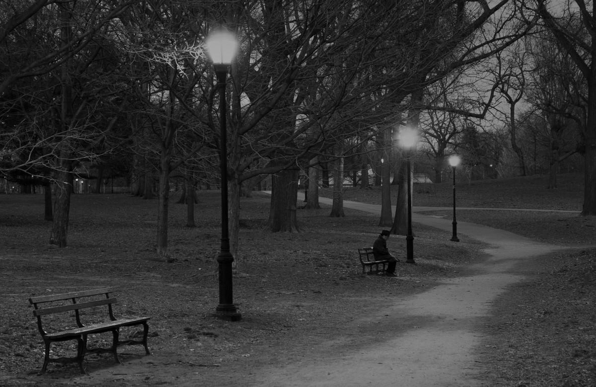 vivid-dreams-on-a-park-bench-flash-fiction