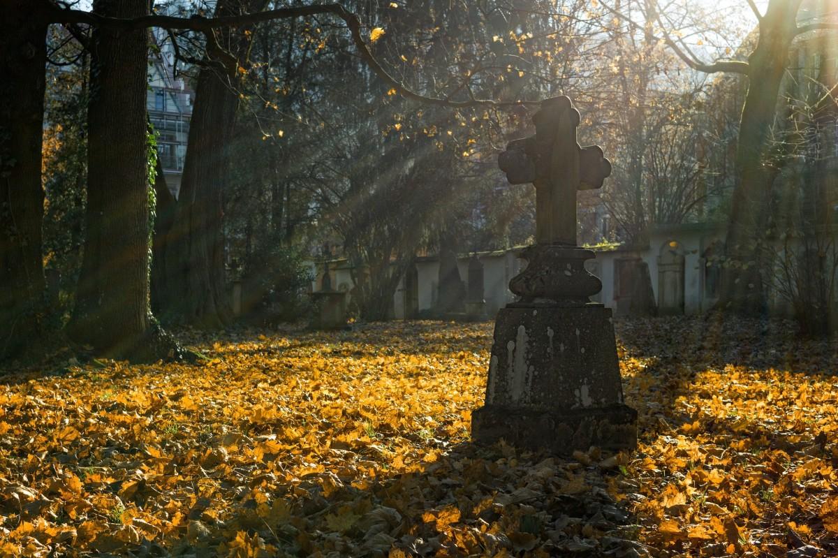 graveyard-musings