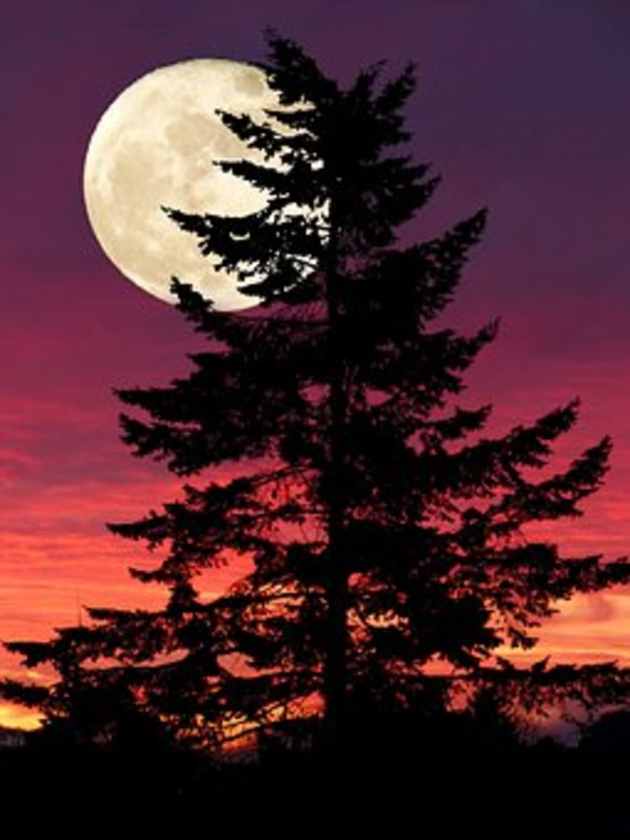 moon-of-yellow-gold