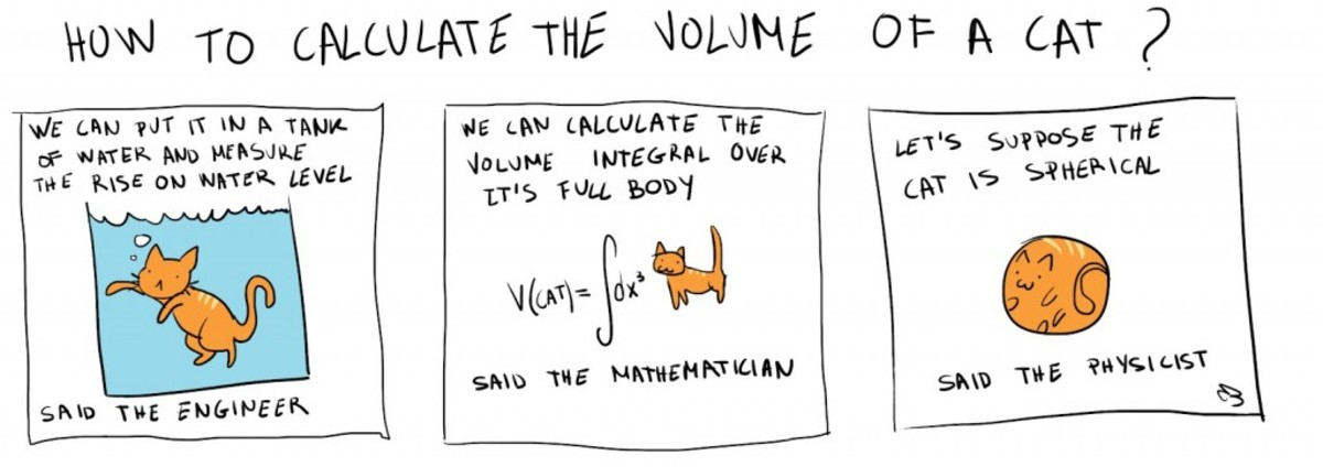 How to calculate the volume of a cat
