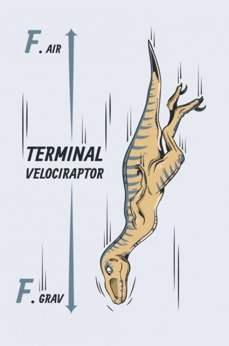 Terminal velociraptor