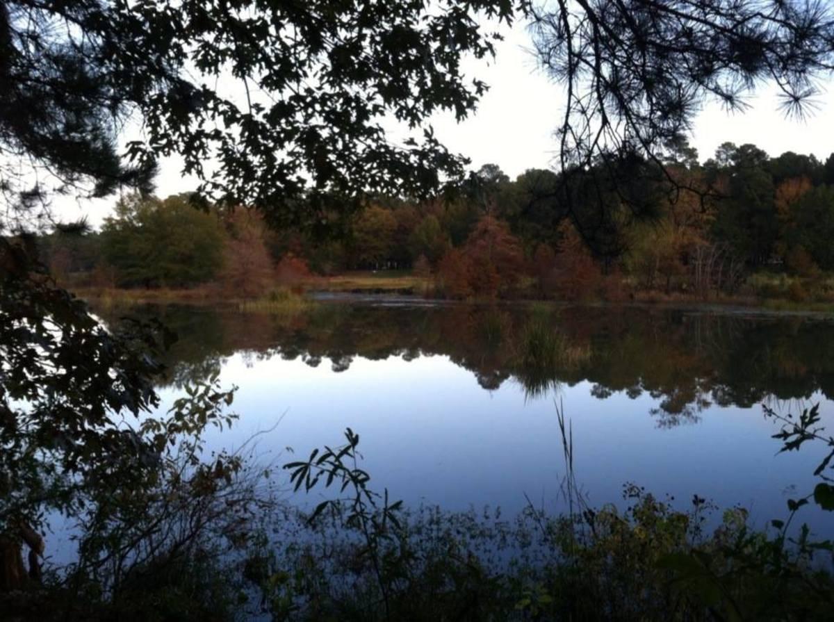 Millwood State Park