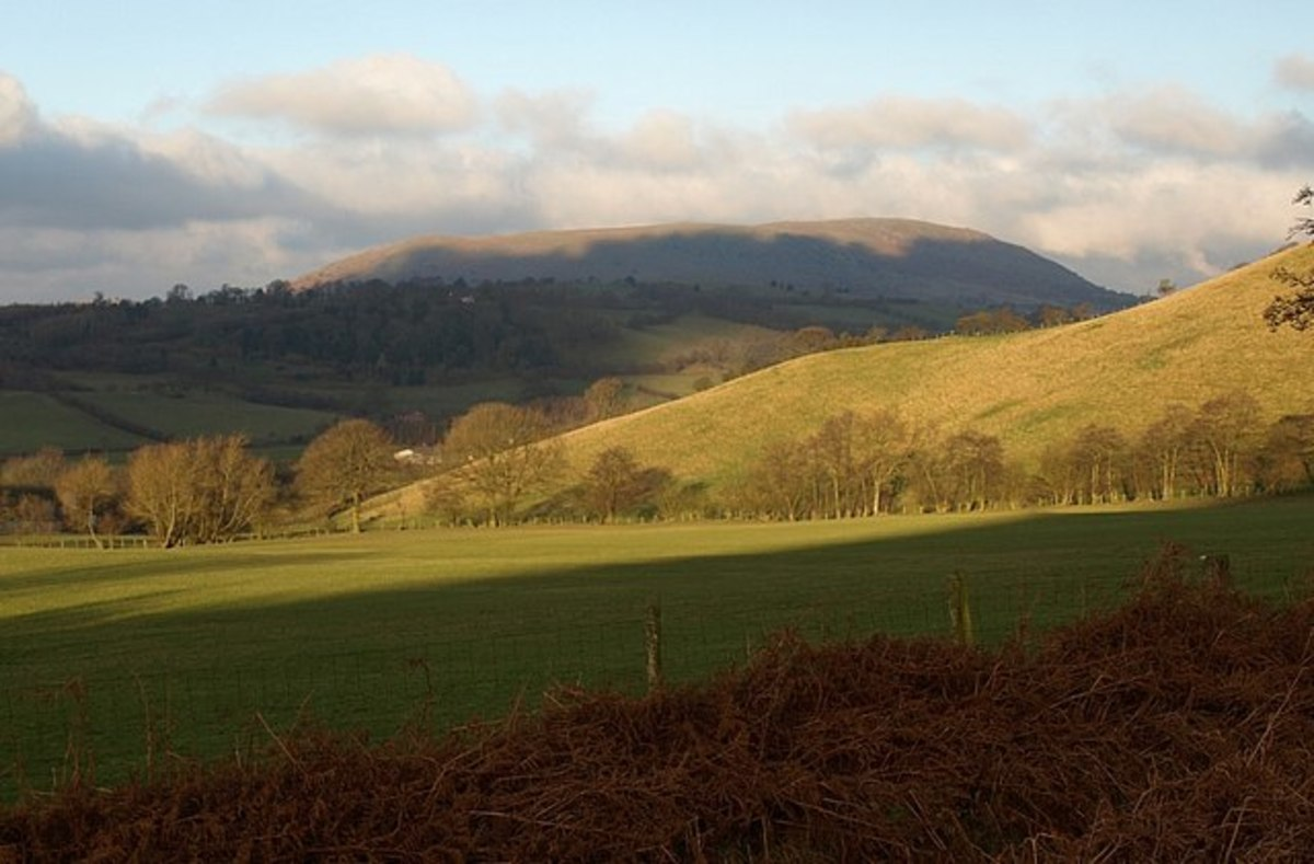 Slopes of Cefn Gunthly and Corndon Hill, by Derek Harper