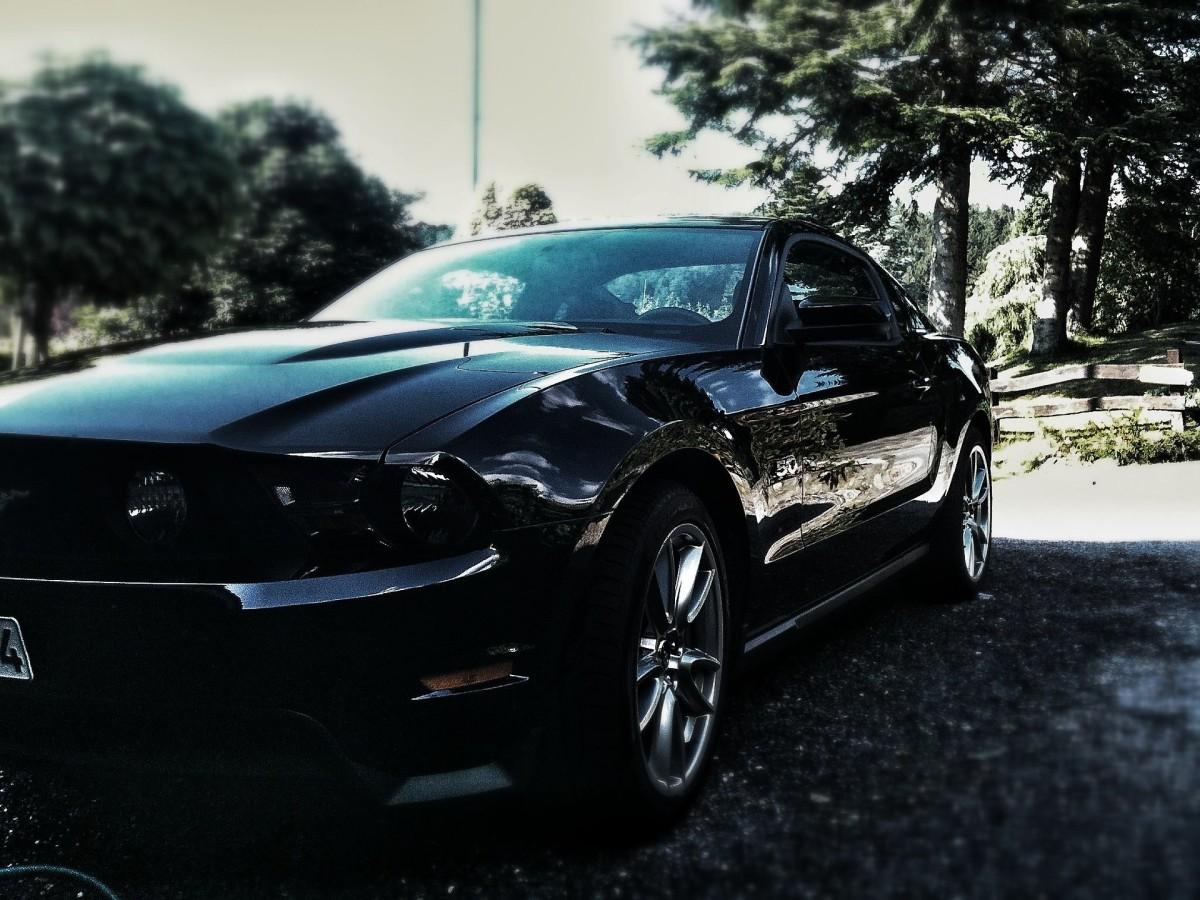 Jack's Mustang