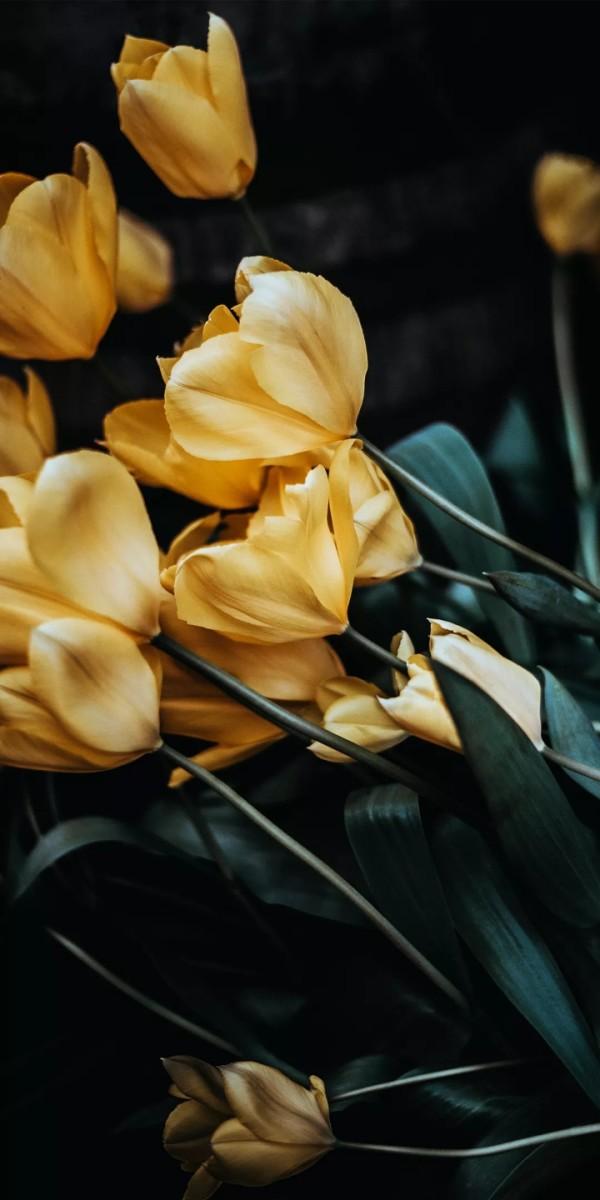 striving-flowers