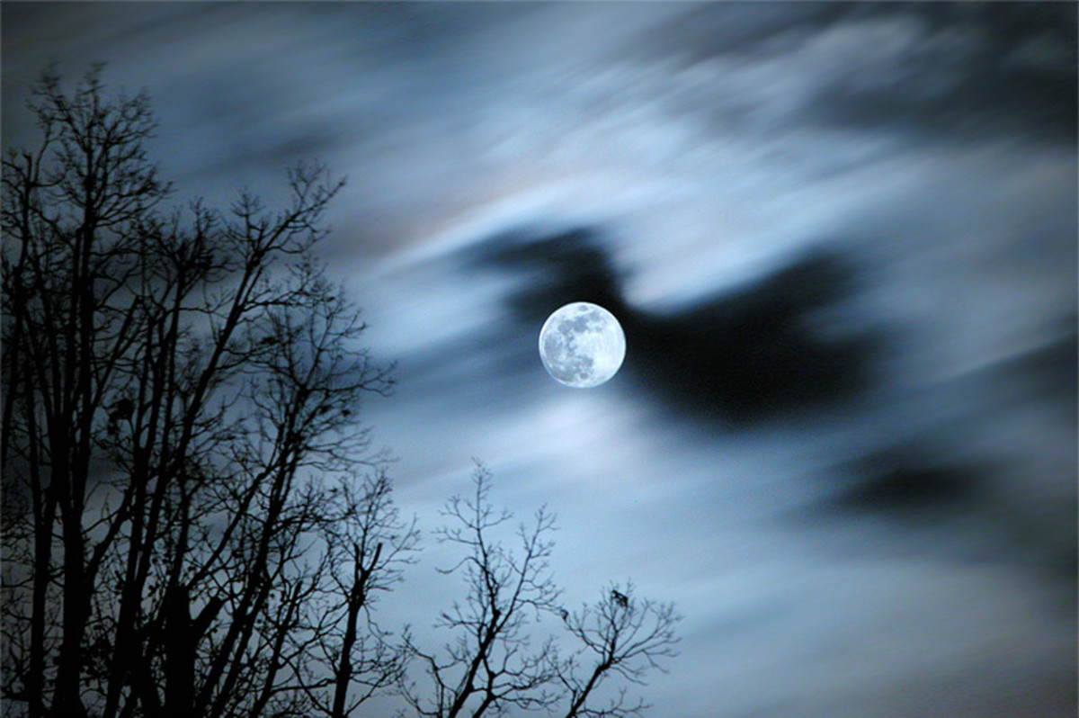 Truly it was a moon meant for Lovers …