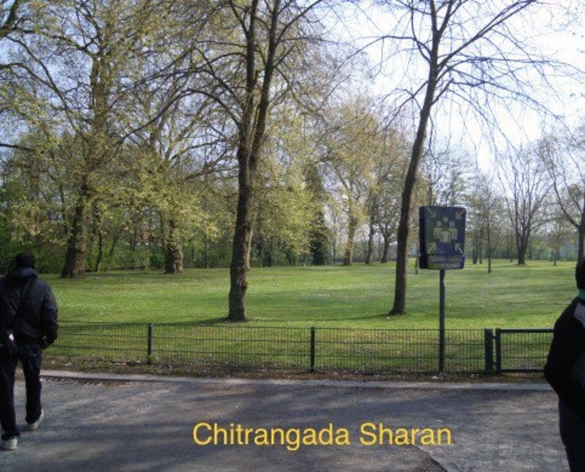 Beautiful park and beautiful green trees. You can smell the freshness.