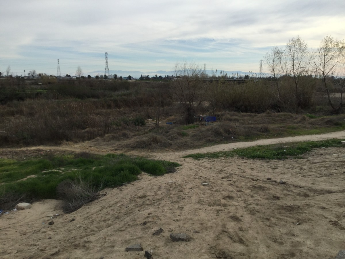 Dry Riverbeds are sought out by the resilient