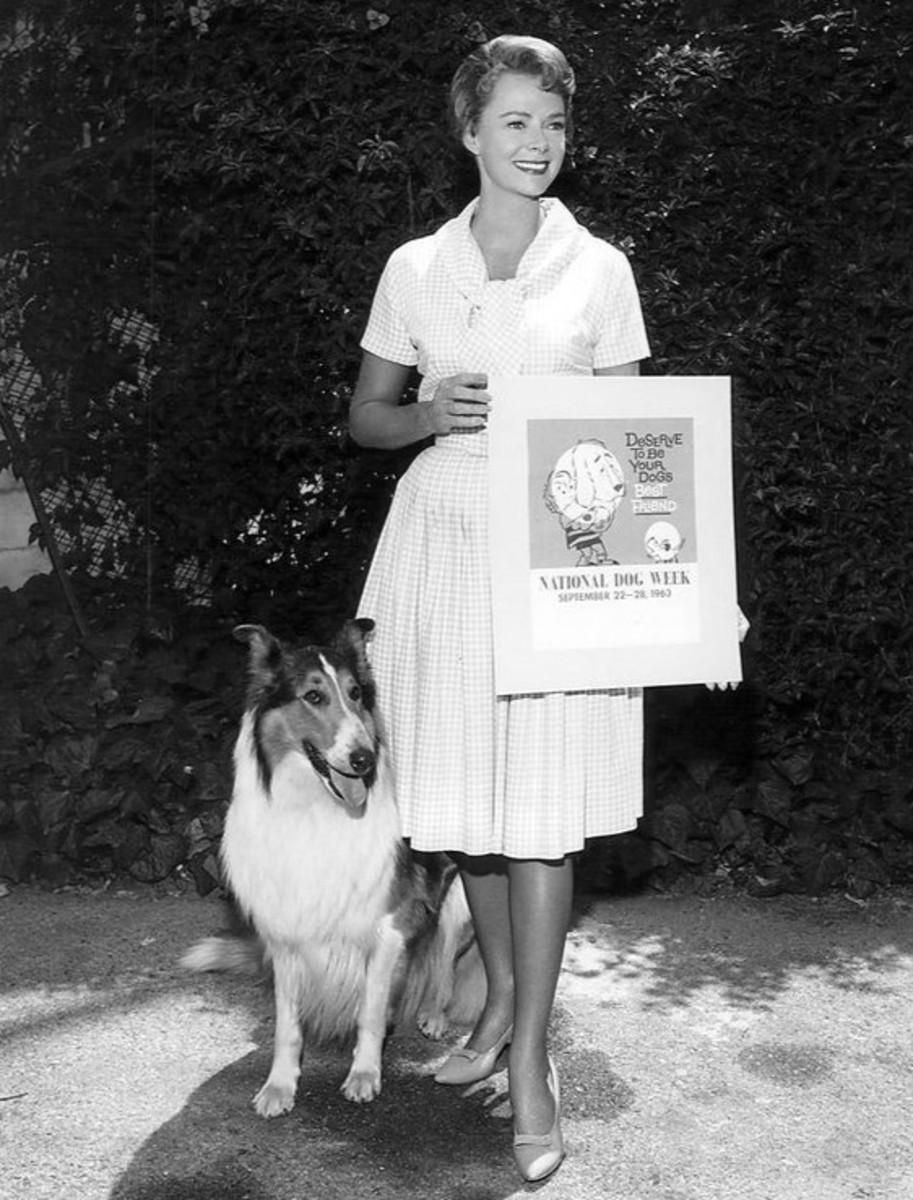 (This is NOT Mrs. Simons) Lassie, left, and June Lockart, right. Lockhart, WOW!