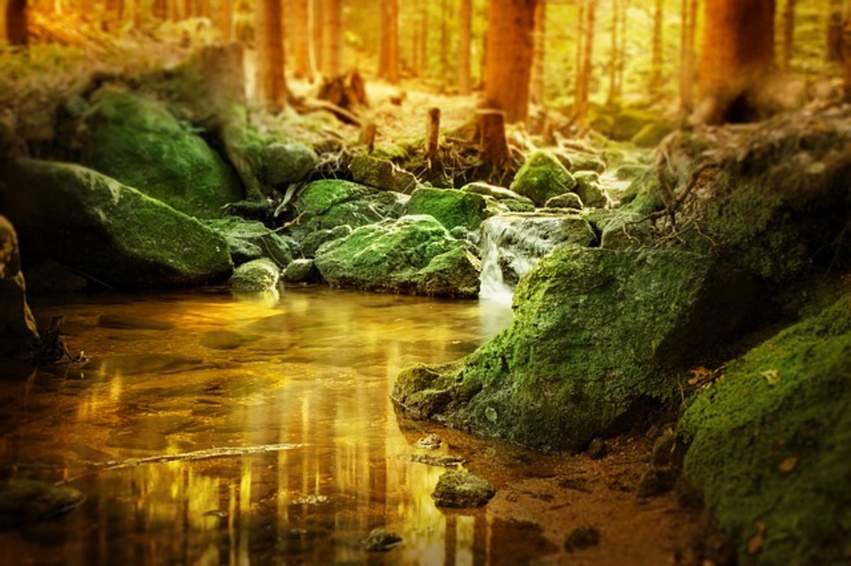Waterfalls-Haiku