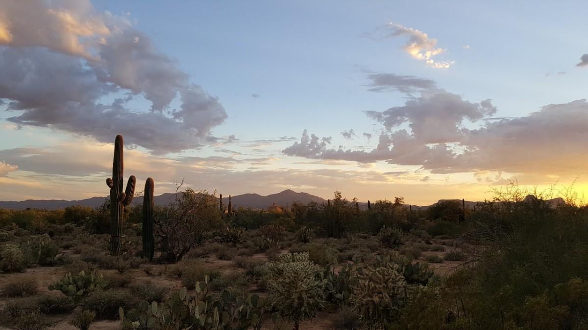 a-tiny-story-romance-and-savagery-in-19th-century-southwestern-arizona