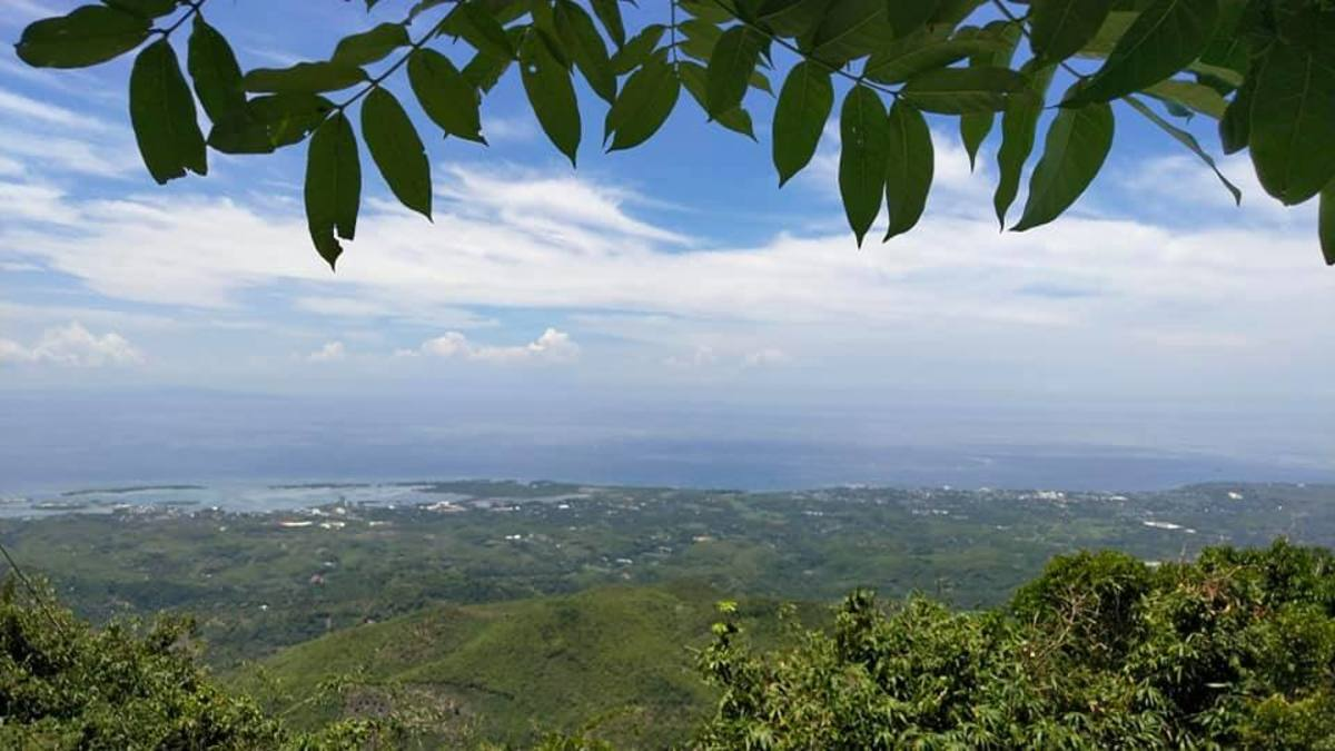 The coastal view you can see at the peak of Mt. Manghilao