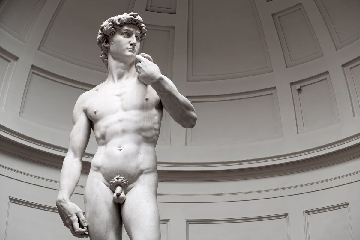 David, according to the interpretation of the Italian artist Michelangelo.